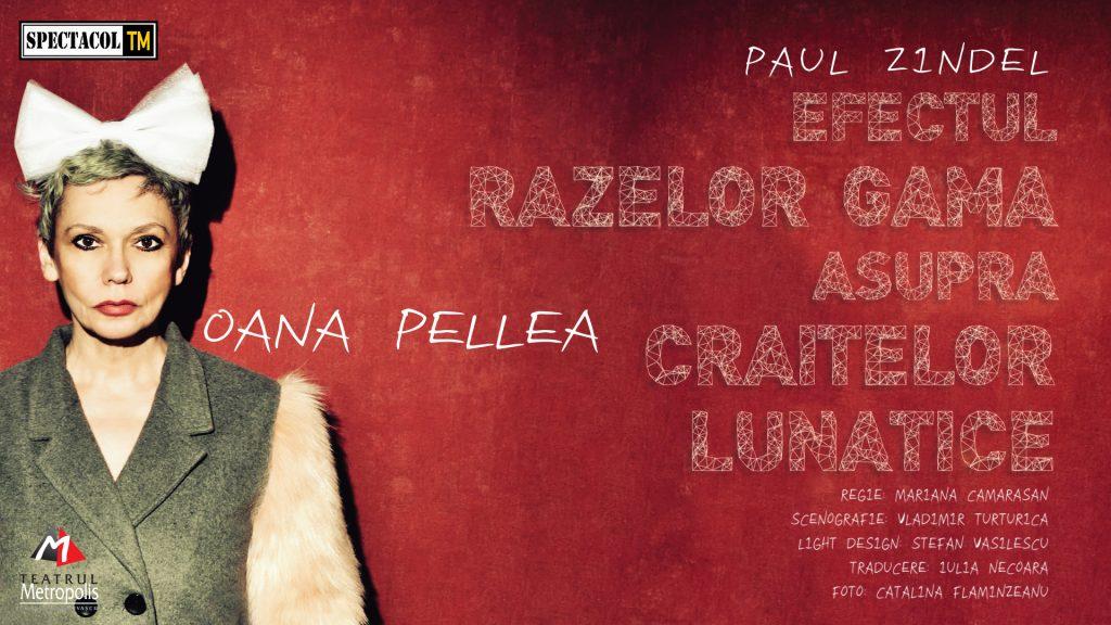 """Oana Pellea revine la Timişoara cu piesa """"Efectul razelor gamma asupra crăițelor lunatice"""""""