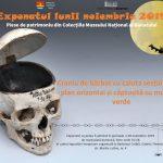 Exponatul lunii la Muzeul Banatului: Craniu-tabacheră din secolul al XIX-lea