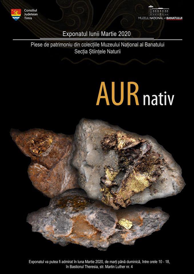 Exponatul lunii martie la Muzeul Banatului: Aur nativ