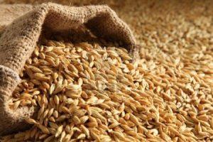 Sprijin financiar pentru agricultorii din sectorul vegetal