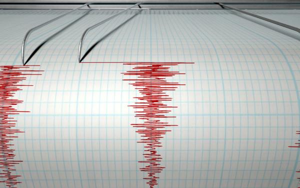 Cutremur în Vrancea. Ce recomandă ISU