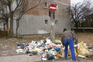 Timişoreni arşi la buzunare pentru că au aruncat deşeuri pe stradă