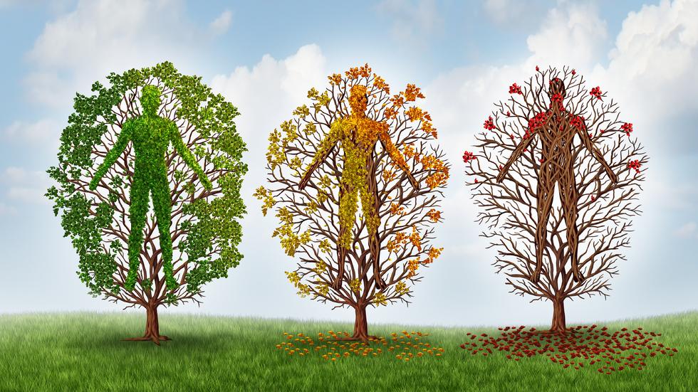 Organismul nostru se reînnoiește la fiecare 7 ani! Iată ce modificări aduce fiecare etapă