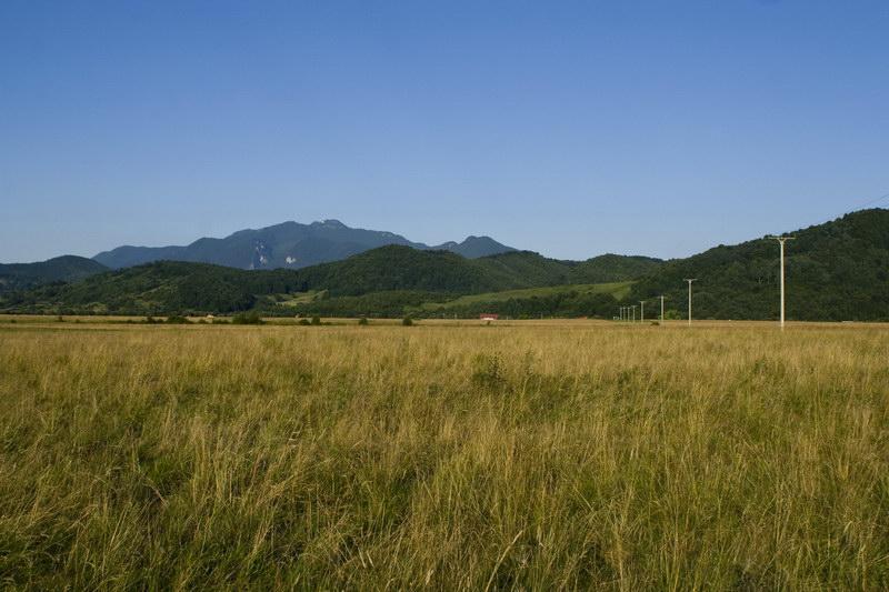 Municipalitatea cumpără terenuri pentru a construi parcuri