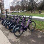 S-a semnat contractul pentru bicicletele achiziționate în cadrul proiectului de reabilitare a malurilor Begăi