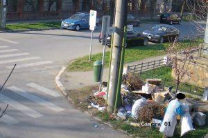 Timișoara, fără firmă care să măture străzile