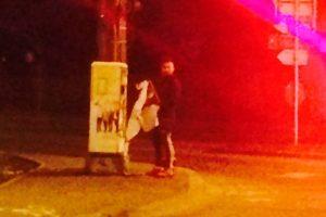 Dacă observați persoane care lipesc afișe în locuri nepermise, sunați la Poliția Locală Timișoara