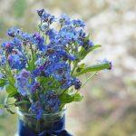 """Flori albastre de """"Nu mă uita"""" de Ziua Internaţională a Conştientizării Autismului"""