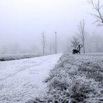 Vine iarna grea peste România
