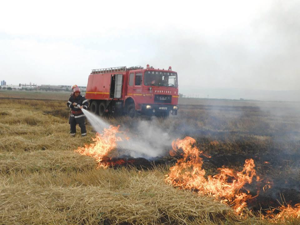 Garda de mediu va lua măsuri împotriva proprietarilor de terenuri pe care se incendiază vegetația uscată