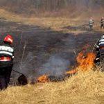 Incendii de vegetație uscată în Timiș