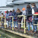 Timișoara va avea Aquapic, un inedit centru educațional