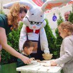 Unde pot copiii să câștige un ou de ciocolată de 8,5 kg