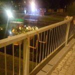 Un turc și un arădean amendaţi după ce au aruncat în Bega jardiniere de pe Podul Michelangelo