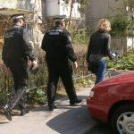 Ce probleme au găsit polițiștii locali în Kuncz, Plopi și Baba Dochia