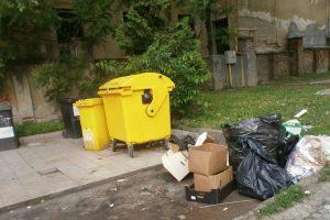 Sub orice critică! Trei firme, amendate pentru că au aruncat deșeuri chiar în Piața Victoriei