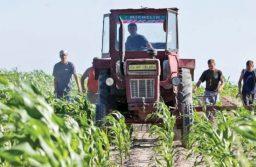 Delegația Română PSD votează pentru protejarea intereselor fermierilor români în Parlamentul European
