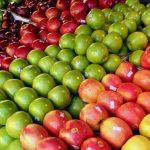 Preşcolarii din Timiș vor primi fructe proaspete în școli