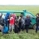 Șapte migranți, opriţi la frontiera cu Serbia