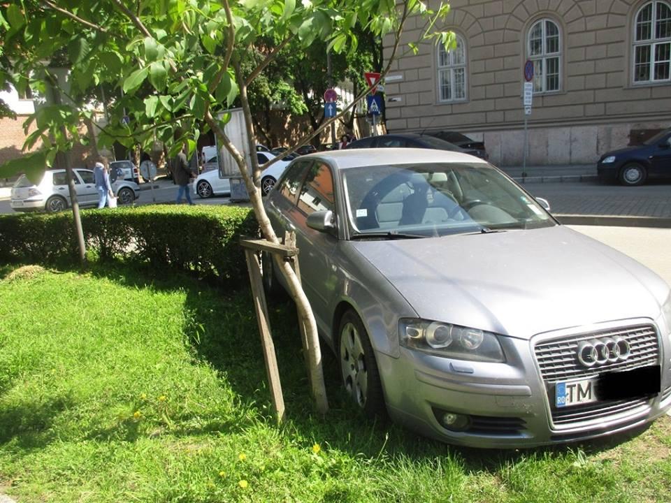 Ce amenzi au primit șoferii care au parcat pe spațiile verzi