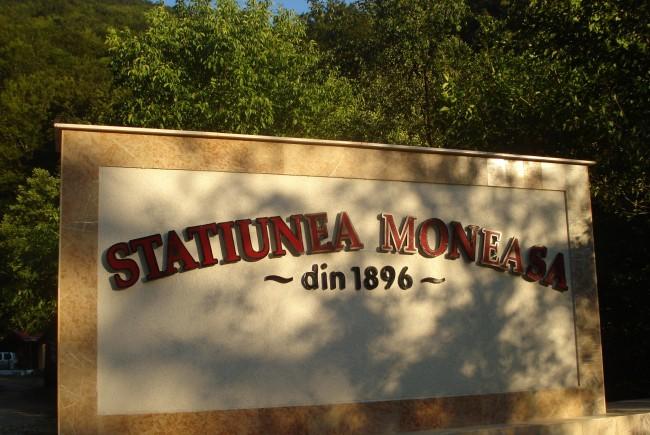 Autorităţile din Moneasa şi investitorii, consultare despre viitorul staţiunii