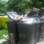 Ce mizerie au găsit polițiștii locali în zona Complexului Studențesc