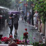 Cod galben de ploi în Timiș