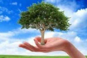 De Ziua Mediului, acțiuni de conștientizare cu privire la necesitatea colectării selective, precum și a reciclării