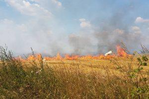 Recomandări ale pompierilor pentru a evita incendiile de vegetație uscată în comuna Lovrin