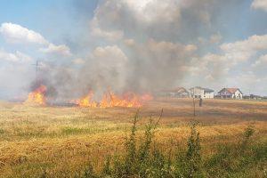 Recomandări ale pompierilor pentru a evita incendiile de vegetație uscată în comuna Biled