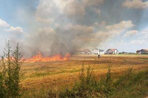 Intervenție dificilă a ISU Timiș pe un câmp din Giarmata Vii