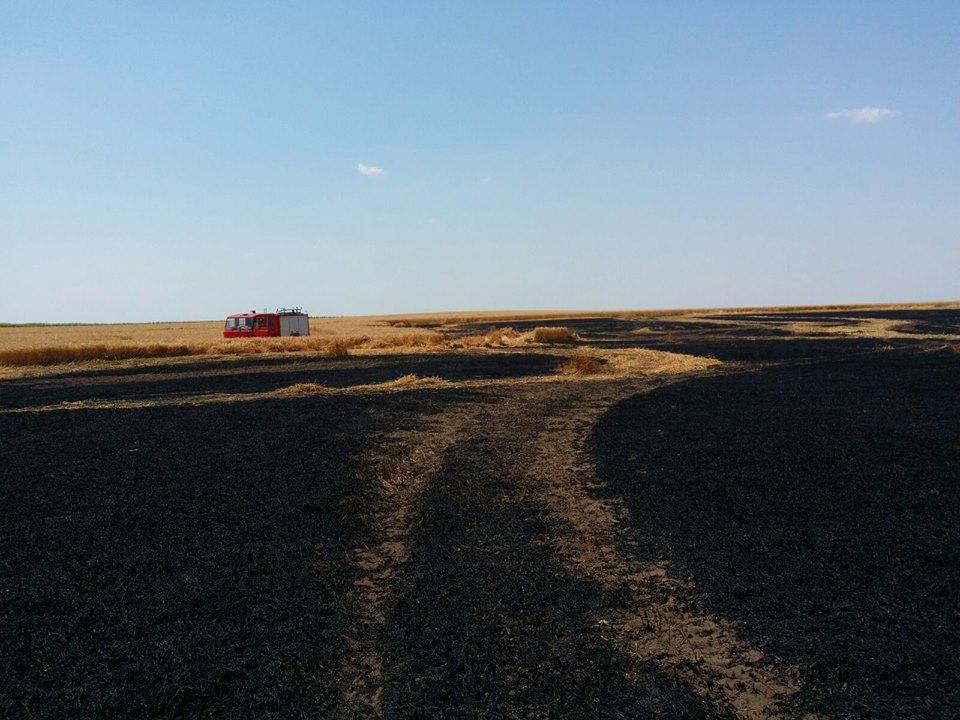 Douăsprezece hectare de grâu făcute scrum