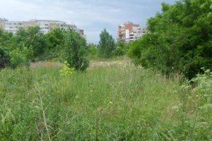 Supraimpozitare pentru proprietarii de terenuri care nu cosesc iarba