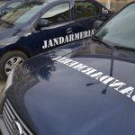 Jandarmii și inspectorii vamali, razie într-o piață din Lugoj, pentru depistarea contrabandiștilor