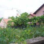 Zeci de proprietari de terenuri, amendaţi la Timişoara. Ce nu au făcut?