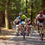 """O nouă tură ciclistă bănăţeană marca """"Verde pentru Biciclete"""""""