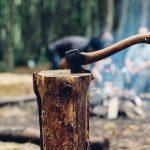 """""""Stop tăierilor ilegale"""" – un prim aviz favorabil pentru protejarea parcurilor naţionale"""