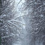 Meteo. Zonele unde vor fi cele mai abundente ninsori