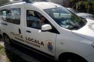 """Studenții au """"repopulat"""" campusul universitar din Timișoara. Polițiștii locali revin în zonă"""
