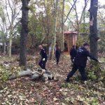 În timpul liber, pompierii au mers să curețe parcul din Buziaș, devastat de furtună