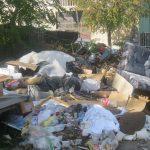S-a finalizat curățenia de toamnă, dar deşeurile continuă să apară pe străzi