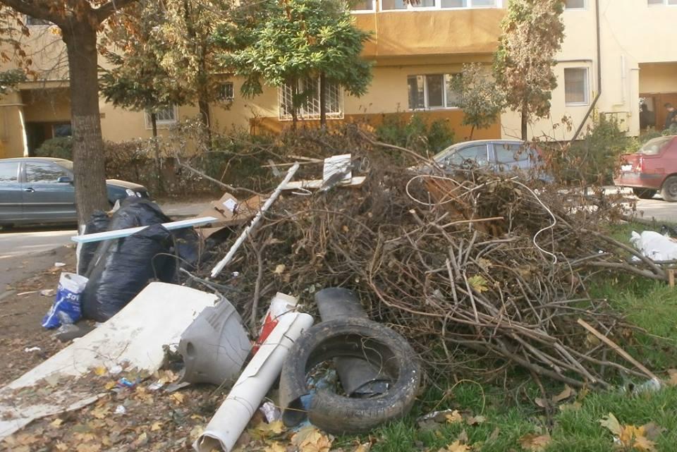 S-a umplut oraşul de deşeuri. Care este motivul
