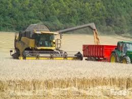 Noi reglementări pe piața cerealelor