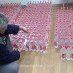Captură de peste 500 litri de alcool