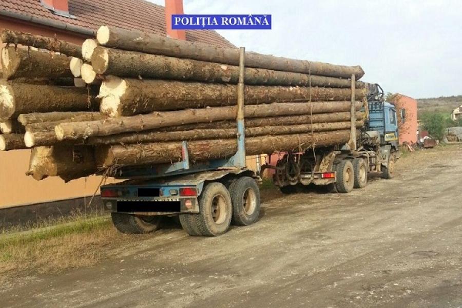 Pagubă de sute de mii de lei în pădurile din zona Lugojului