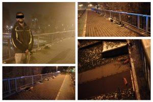 Un student hunedorean a aruncat jardinierele de pe Podul Michelangelo, în Bega, pentru a avea… noroc