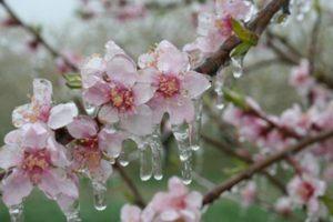 Echinocțiul de primăvară 2018 are loc în 20 martie. Ce trebuie să faci pentru a avea noroc