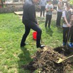Viceprimarul Diaconu a plantat arbori în curtea şcolii la care a învăţat