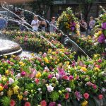 Foto. Peste 100.000 de vizitatori laTimfloralis
