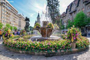 Guvernul a alocat 53 de milioane de lei pentru Timişoara Capitală Europeană a Culturii